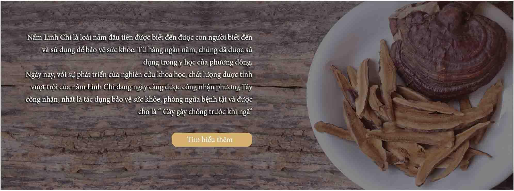 Giới thiệu về nấm linh chi Hoàng Gia