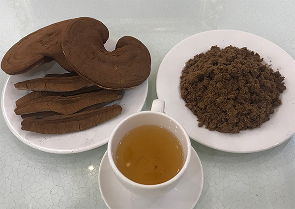 Cách sử dụng nấm linh chi đỏ hiệu quả nhất | Linhchihoanggia